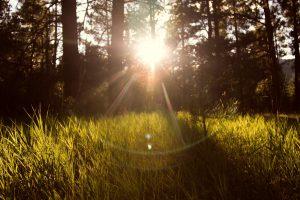 Sonneneinstrahlung UV-Schutz